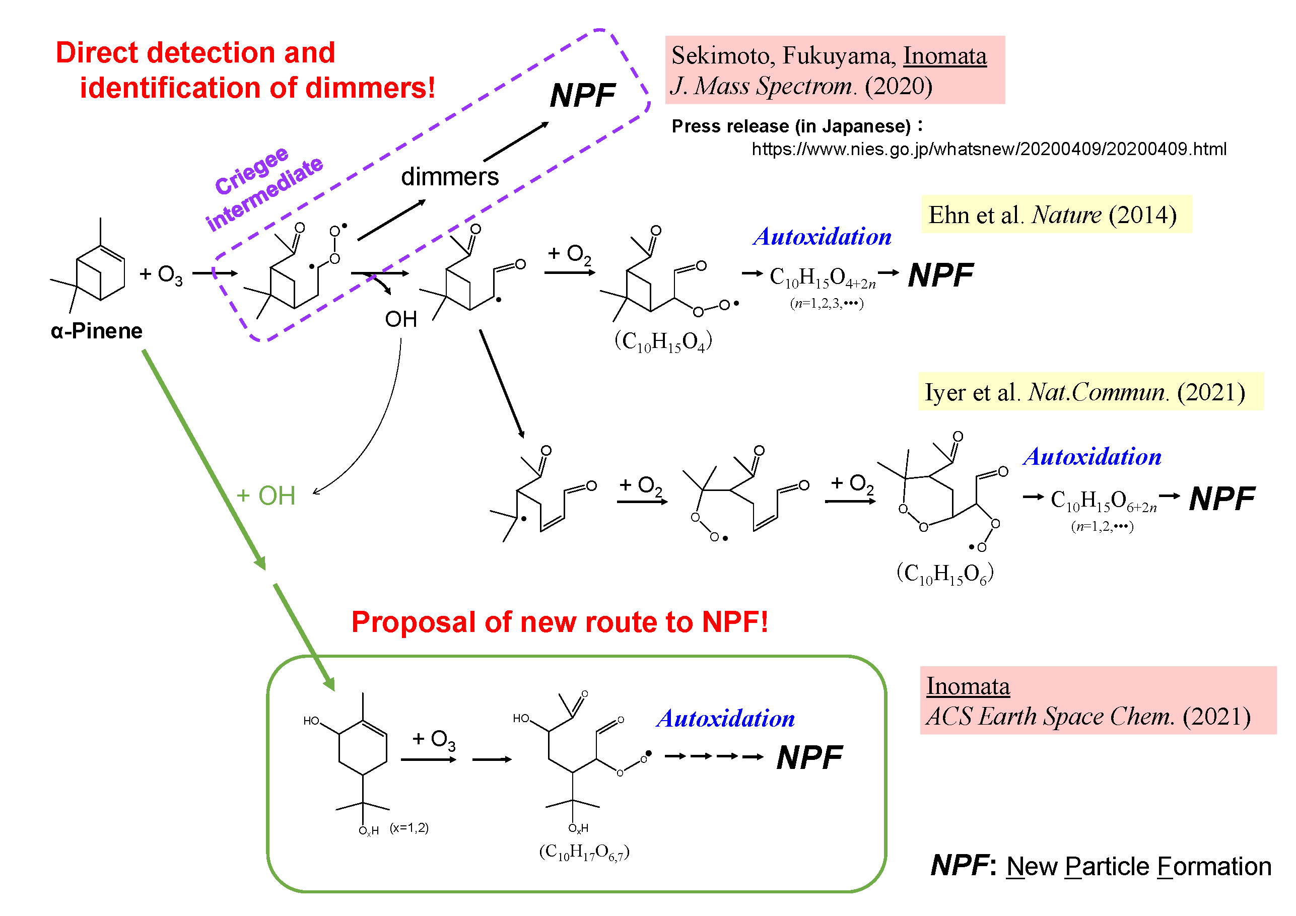 A new reaction pathway for new particle formation during α-pinene ozonolysis